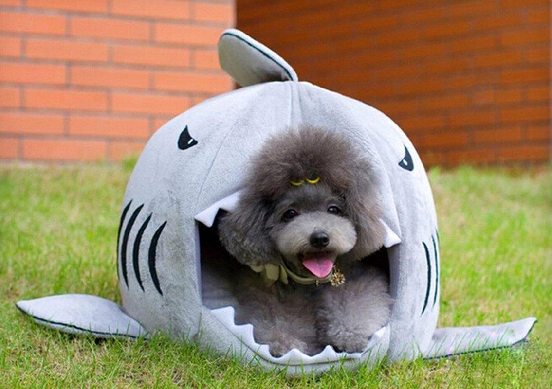 Cama para perros peque os con forma de tibur n ideas para regalar - Casas para perros pequenos ...