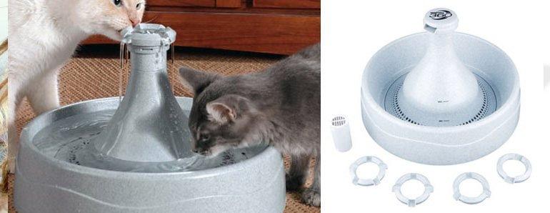 Fuentes Agua Para Gatos Fuente de Agua Para Gatos