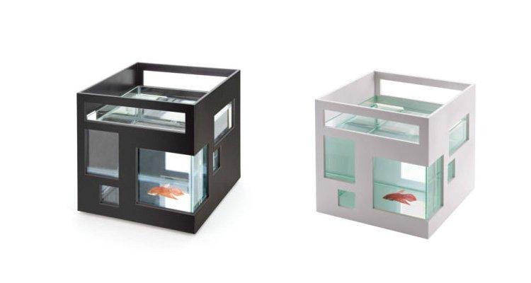 Mini pecera port til ideas para regalar for Oficina portatil
